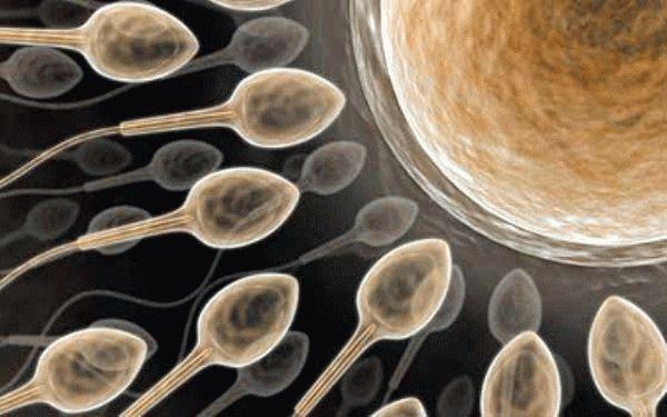 Фото сухой спермы на чорнай футболке фото 280-308