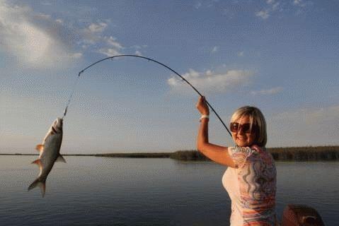 К чему снится маленькая рыба женщине